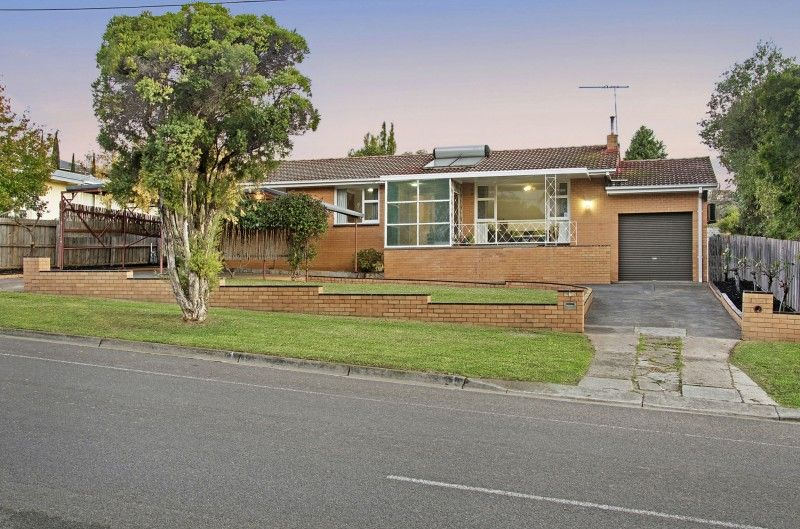 Opportunities Abound - Highton