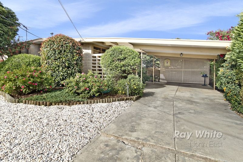 Excellent First Home or Investment! - Modbury Heights