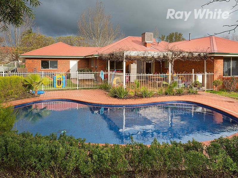 The Leafy End of Town - Wodonga