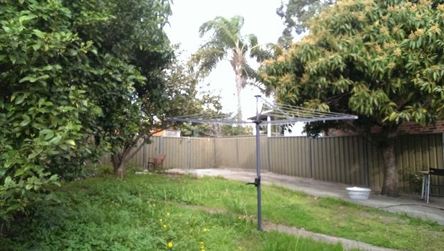 2 Bedroom fully renovated cottage - North Strathfield