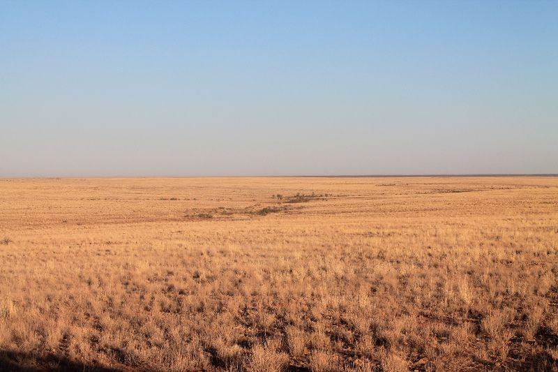 Sub-Lease of Major Cattle Station - Thargomindah