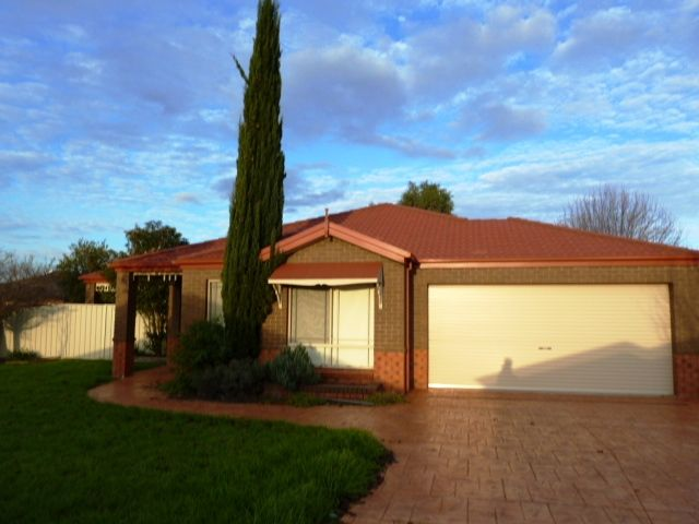 Spacious family home - Wagga Wagga