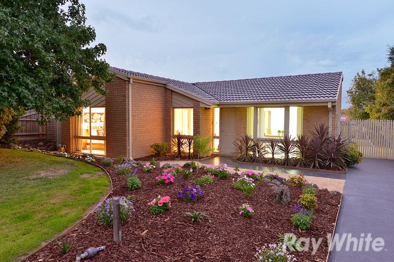 A Renovated 3 Bedroom Home On A Generous Block - Rowville