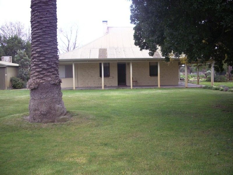 Rental Available February! - Bordertown
