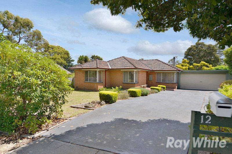 A Very Well Maintained 3 Bedroom Home On A Large Block - Ferntree Gully