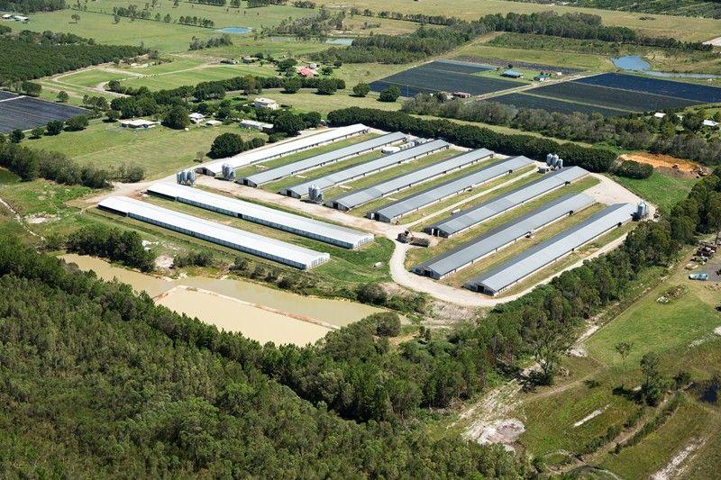 Broiler Farm - South East Queensland - Donnybrook