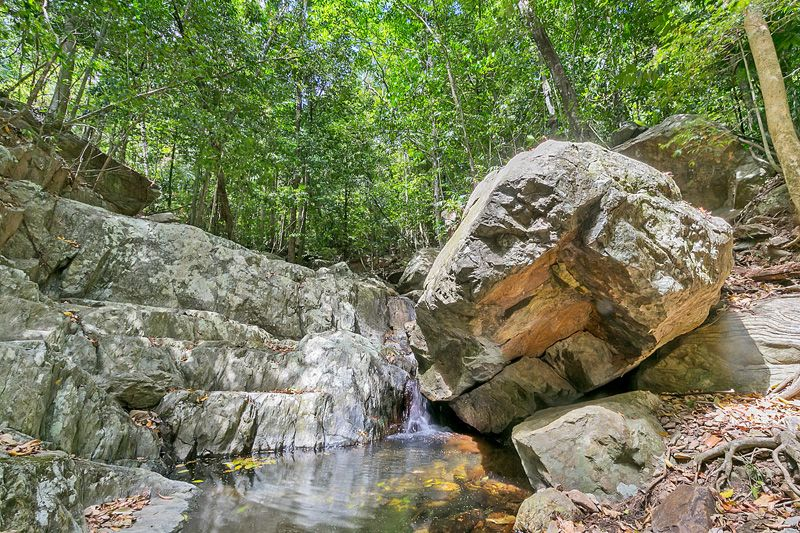4.5 ACRES OF RAINFOREST SANCTUARY ONLY FIVE MINUTES FROM THE BEACH - Smithfield