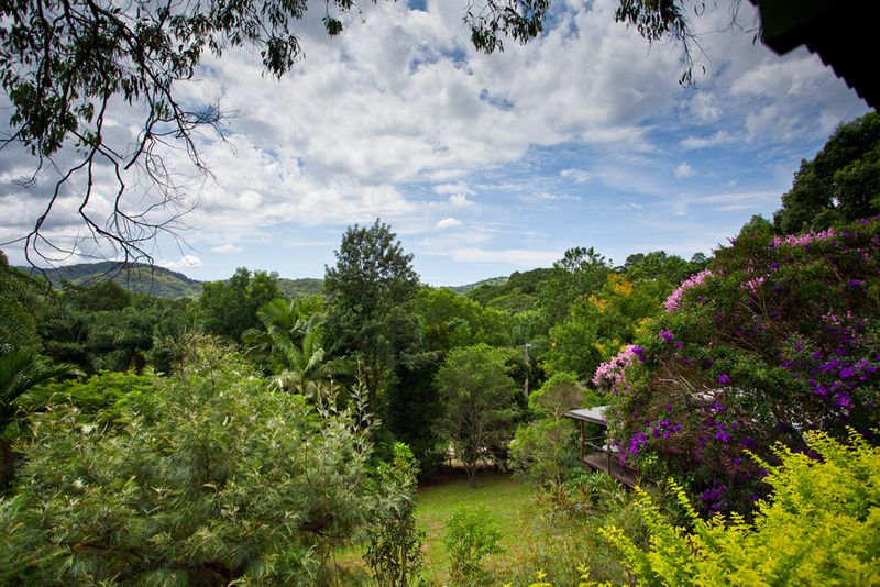 2 Homes plus Guest House/Artist Studio on 2 acres Close To Town - Mullumbimby