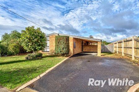 Renovated Family Home - Hastings