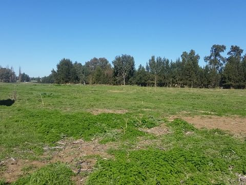 Canowindra, Lot 3 Icely Road